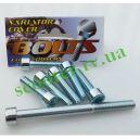 ADDRESS-50/100 SEPIA болты крышки вариатора (шестигранный шлиц) 7шт