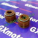 4Т 50 / 125 / 150cc Сальники клапанов (2шт) GX-Motor